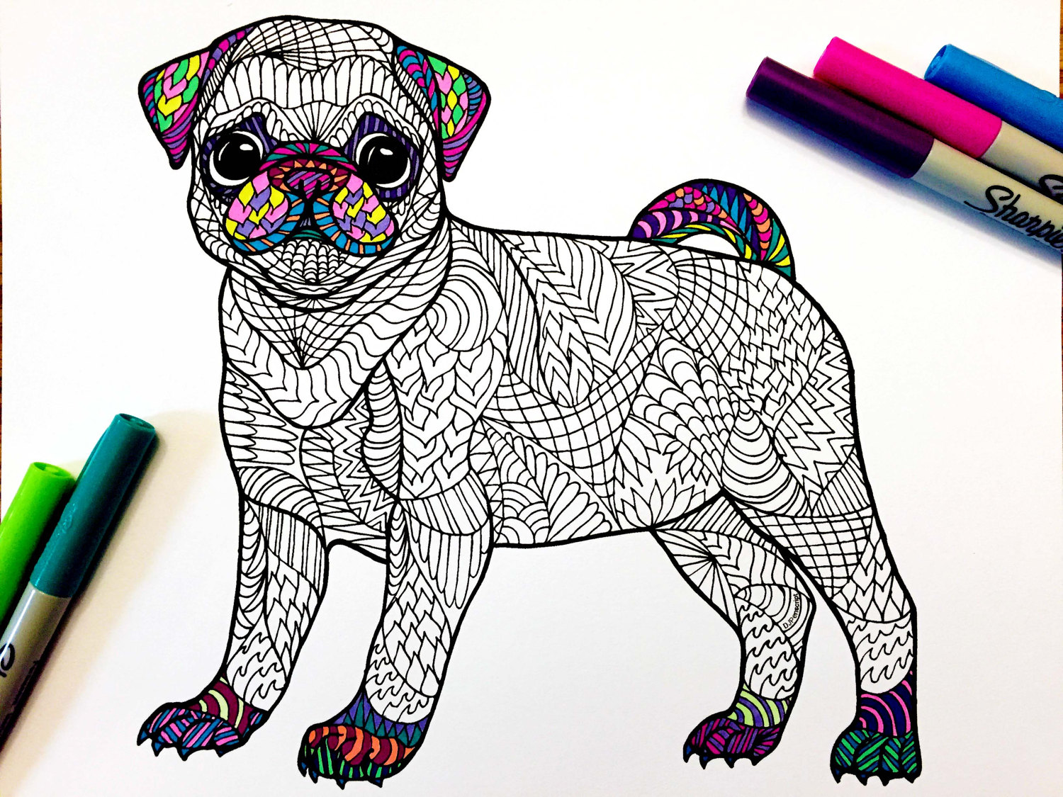 Pug Puppy Pdf Zentangle Coloring Page